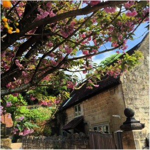Kingham Cottage open to unpaid carers for free respite breaks